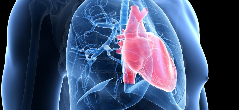 Коморбидность: артериальная гипертензия и сахарный диабет
